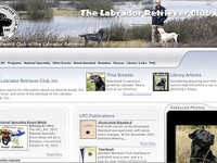 Using a website like the TheLabradorClub.com can help you make an informed decision on selecting a retriever breed.