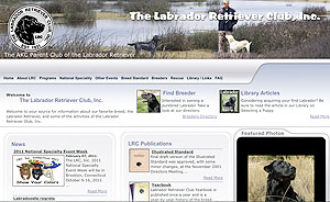 Using The Web to Select a Retriever Breed