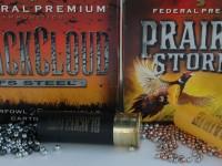 Black Cloud and Prairie Storm
