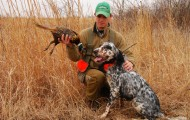 Dog-with-pheasant