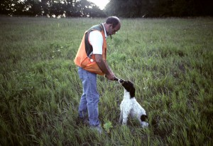 Dog-training_002
