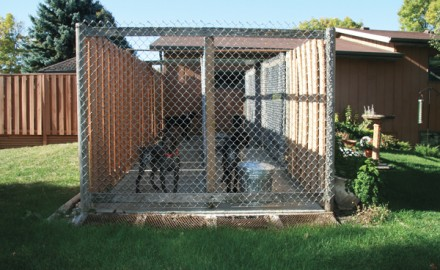 Whether you're building or buying a new dog kennel, following these simple guidelines will ensure a safe and comfy home for your favorite hunting buddy.