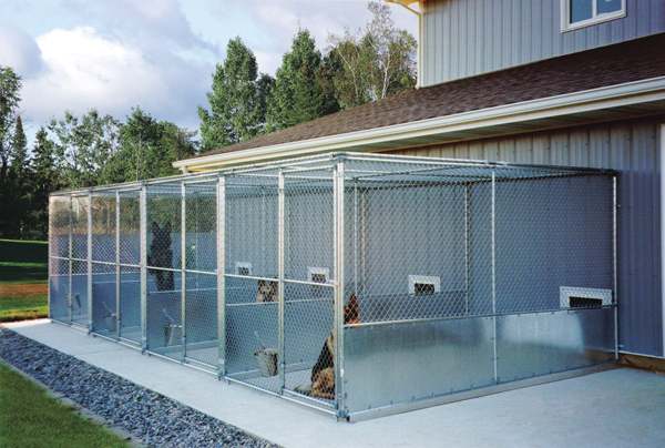 How To Build the Perfect Dog Kennel - Gun Dog Magazine