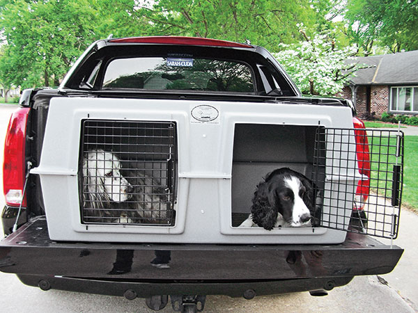 Best Dog Crates & Kennels Right Now