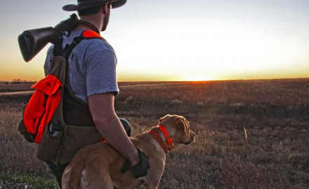 As many owners can attest, your gun dog of choice says a lot about you. And much like people, no