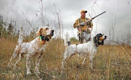If you have ever felt helpless training a new gun dog, or even a well-conditioned field veteran,