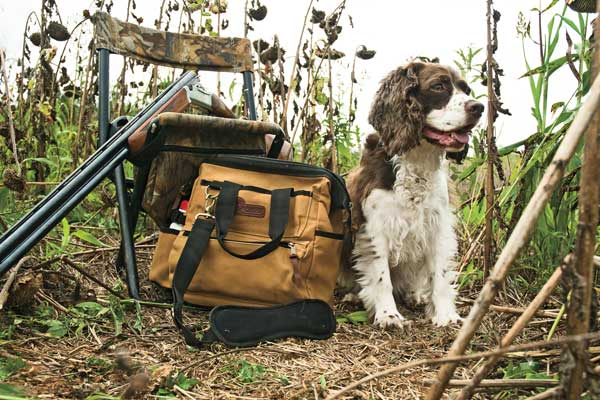 Why You Should Finish Gun Dogs Together