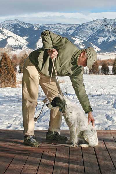 Dog Training Aids To Make Them Come Back