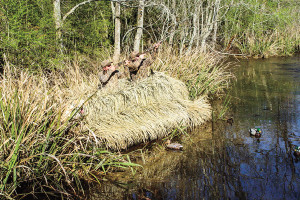 Ground Blind Options for Waterfowlers