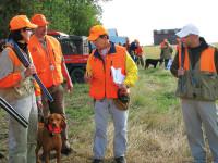 Post-season drills for dogs