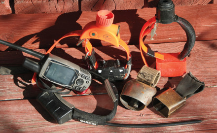 Tracking Devices for your hunting dog