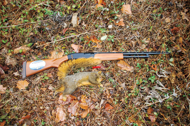 Mossberg .410 review