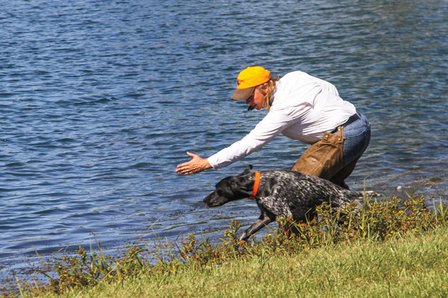 Training Dogs Through the NAVHDA