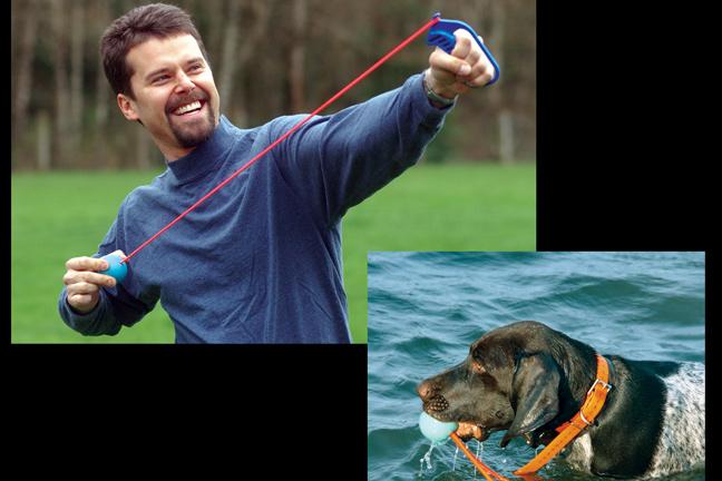 New Dog Training Tools