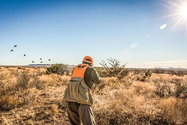 rolling-plains-quail-research-ranch