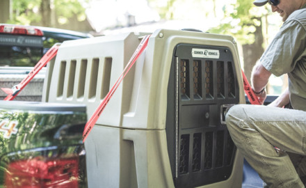 New products that bird hunters will want to take a look at include a great new traveling kennel,