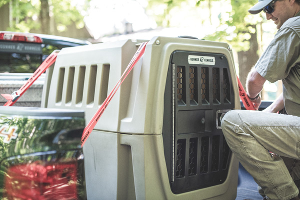 The Ultimate Dog Kennel Plus 5 Great Gun Dog Products