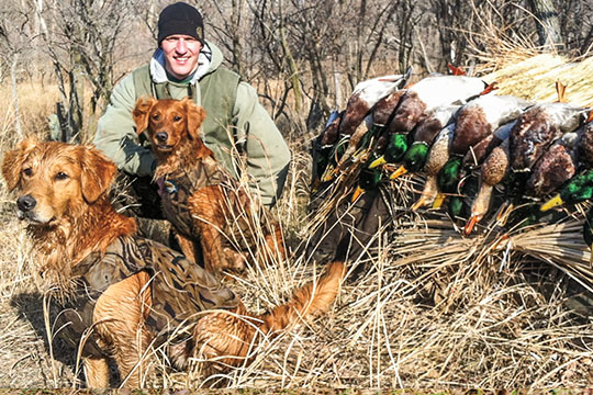 Nick Bilava got into golden retrievers in no small part because his mother, Theresa, has been breeding field-bred goldens for years. Together they operate Platte River Retrievers, where they focus on producing a few litters each year that are bred to be smart, athletic and will hunt everything they are asked to hunt.
