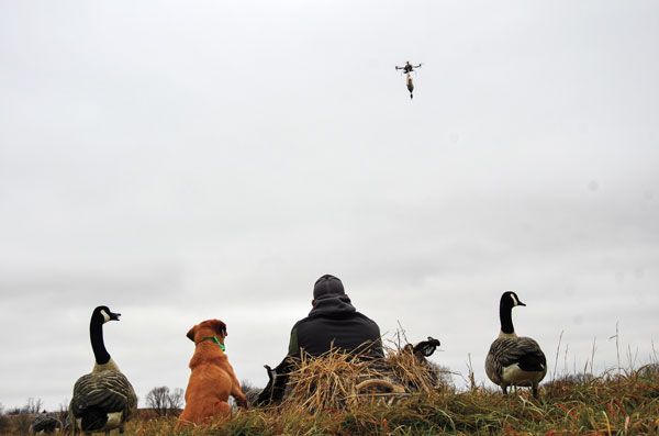 How Drones Can Help with Retriever Training