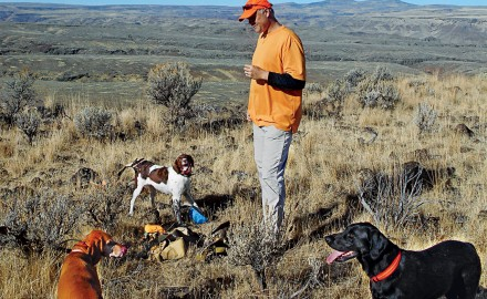 Hunting chukars and solving the pointer-flusher dilemma.