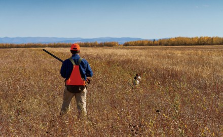 The pursuit of Alaska Sharptails on the last frontier is a most worthy upland endeavor.