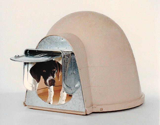 K-9 Kondo Chew-Proof Dog Door