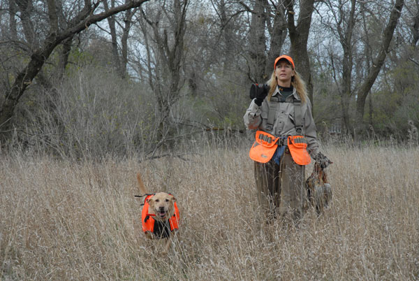 //www.gundogmag.com/files/all-in-a-days-work-hard-hunting-lab-photos/labs_007.jpg