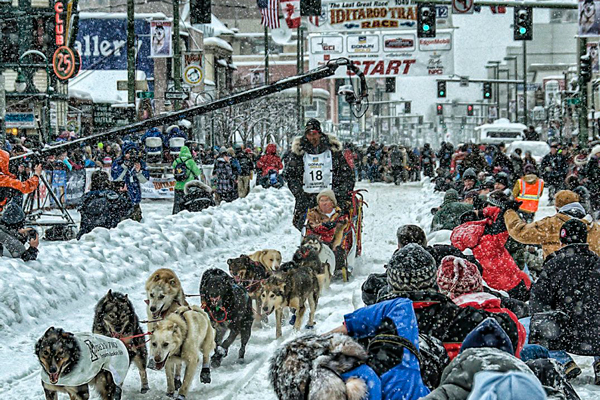 //www.gundogmag.com/files/dogs-of-iditarod/02_iditarod.jpg
