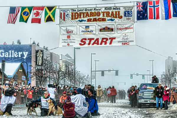 //www.gundogmag.com/files/dogs-of-iditarod/06_iditarod.jpg