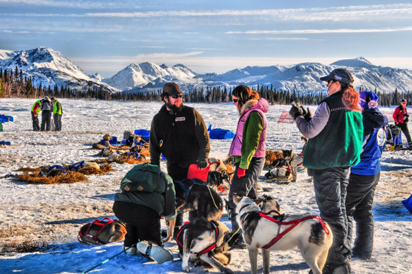 //www.gundogmag.com/files/dogs-of-iditarod/20_iditarod.jpg