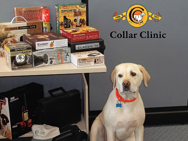 //www.gundogmag.com/files/the-best-dog-training-tools-right-now/collar_clinic.jpg