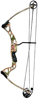 Compound Bows That Hit the Mark