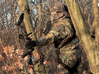 No prudent buck hunter wants to burn a good stand site before it produces, but how do you determine when to hunt hard at every opportunity and when to give your stand a break?