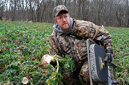Northern Food Plots