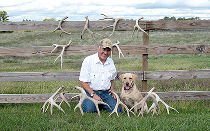 Master trainer Roger Sigler and his good friend Ayla, a yellow Lab, show off some of the mule deer and whitetail sheds found on their spring 2007 trek to southern Saskatchewan. Roger noted that antlers do have an odor that dogs can detect even several years after being shed.