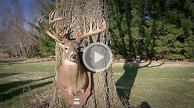 A look back at the Illinois state record buck killed by Richard Pauli in Peoria County, Illinois in