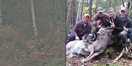 Ian Mackinnon first saw his massive bodied buck on his Bushnell Trophy Cam horsing around with