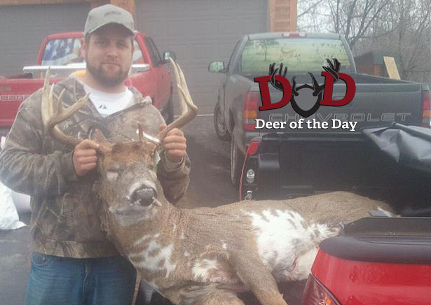 I shot this in Shawano County in Wisconsin on November 12th with my bow. We have photos of him from