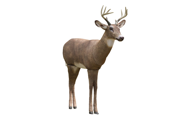 From decoys to camera mounts, here's a look at useful gear for deer hunting.