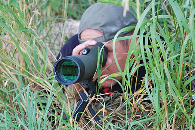 scouting-blunders-for-whitetail-deer