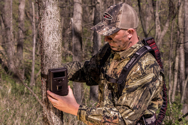 scouting-with-trail-cameras