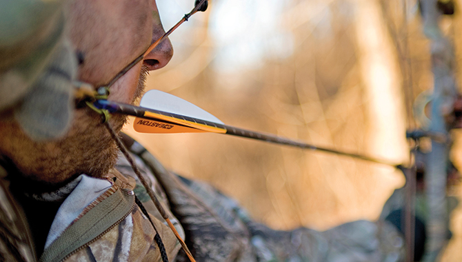 Archery gear is always changing and always improving—that's pretty much a given when you hang