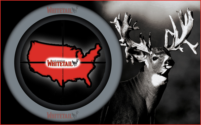 Best States for Whitetail Hunting in 2013