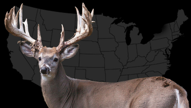 10 Best Big Buck States for 2013