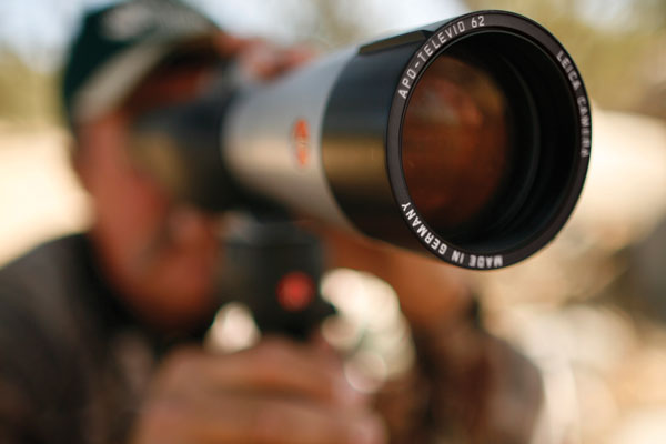 How to Utilize Optics for Whitetail Scouting