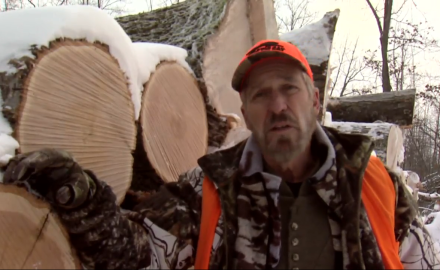 Dr. James Kroll highlights the benefits of logging as part of managing your deer hunting property.