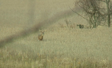 Stan Potts travels to Ohio's Hunt Masters Lodge for another round of bowhunting the rut.