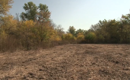 What hunter doesn't want better food plots?