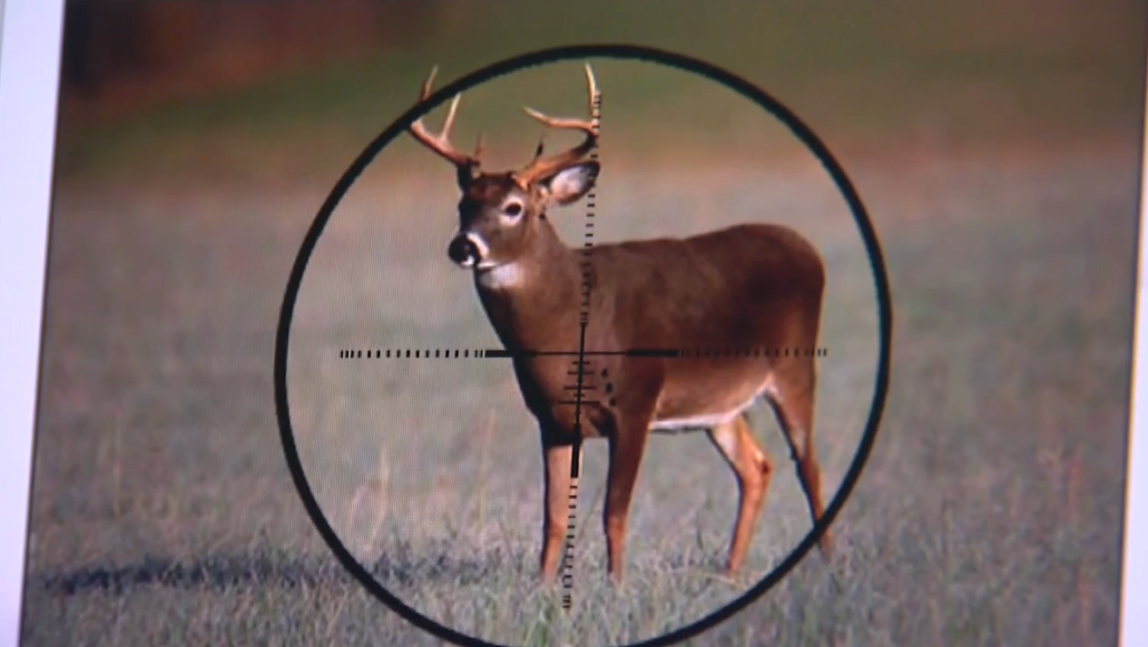 On Target: Zeiss Reticles