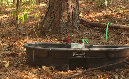 Dr. James Kroll highlights the use of water tanks to spread across your deer property to make sure